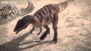 Carcharodontosaurus - Planet Dinosaur - Episode 1.