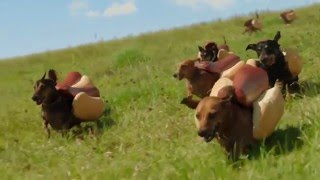 Nonton Heinz Ketchup  2016  Hot Dog Commercial  The   Wiener Stampede  Film Subtitle Indonesia Streaming Movie Download
