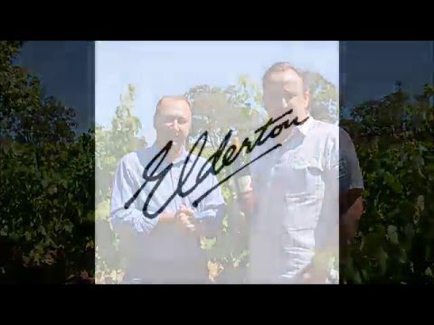 Elderton Wines Command Shiraz video tasting note