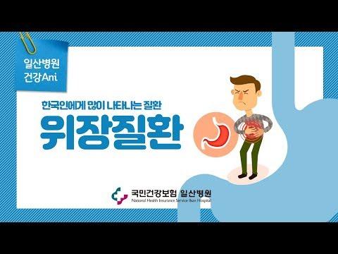 [국민건강보험 일산병원] 한국인에게 많이 나타나는 위장질환