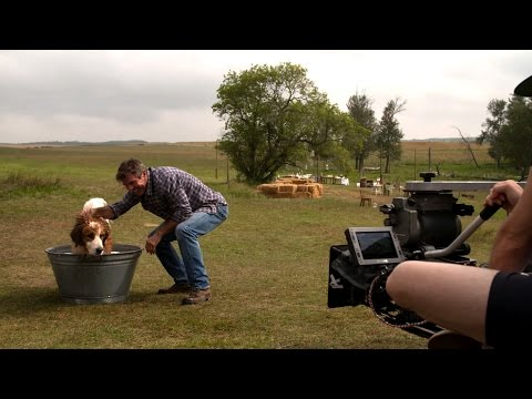 A Dog's Purpose (Behind the Scenes)