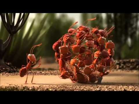 Đoàn kết là sức mạnh - Phim hoạt hình 3D ý nghĩa
