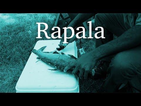 Rapala Heavy Duty Electric Fillet Knife