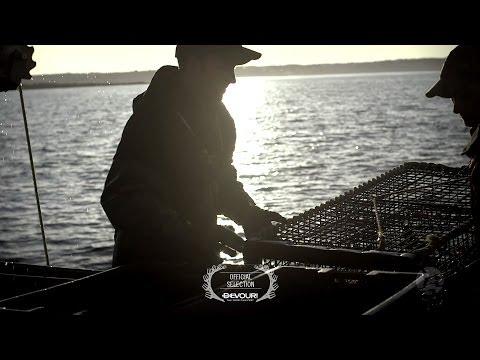 Lobster Fishing - Meteghan, Nova Scotia