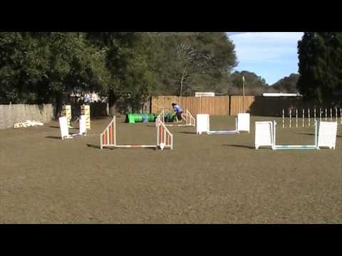 Lizzy UKI Master Series Jumpers 1/12/14