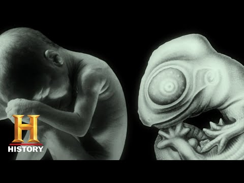 Ancient Aliens: Ancient Alien DNA (Season 10) | History