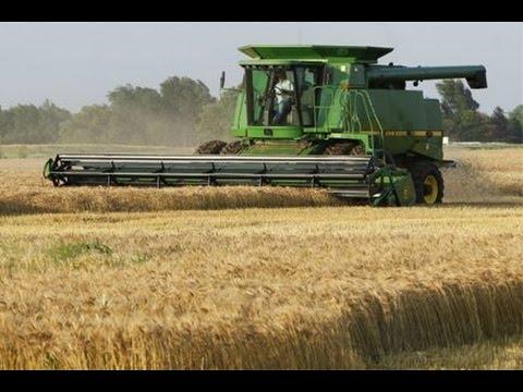 Канада 719: работа в сельском хозяйстве