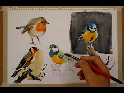WATERCOLOR-PAINTING BIRDS-PINTANDO PÁJAROS