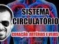 Vídeo Aula 003 - Sistema Circulatório: O coração, as artérias e as veias