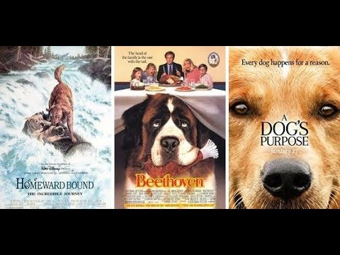 Top 25 Movies For Dog Lovers