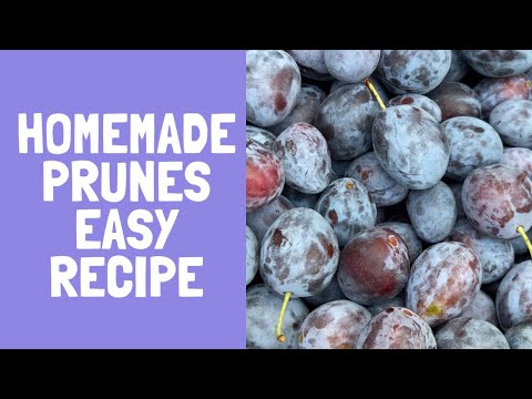 How to make homemade prunes easy recipe. Preserve fruit without canning.
