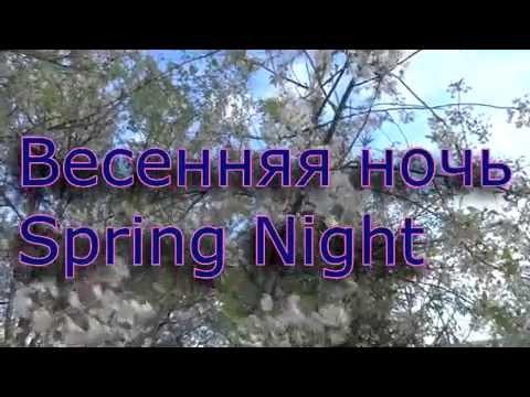 Весенняя ночь. Сергей Чекалин. Spring night. Sergey Chekalin. (видео)