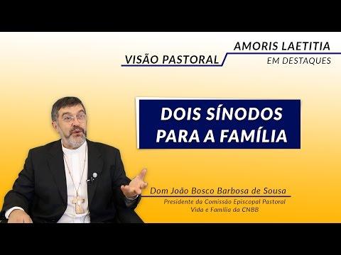 Videos destacam os principais temas da Exorta��o Amoris Laetitia