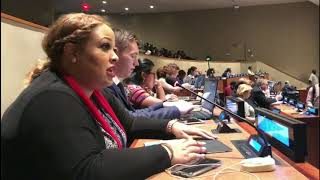 Chika Mercedes's Intervention at HLPF 2019