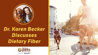 Dr. Karen Becker Discusses Dietary Fiber