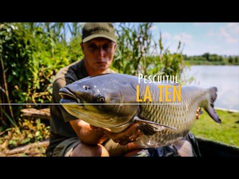 Pescuitul la ten
