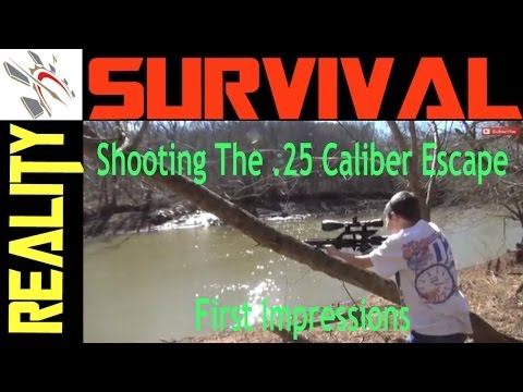 .25 cal airgun - This is just a quick look at me and my boys shooting the Air Force Air Guns .25 Caliber Escape Air Rifle. Wow, was I impressed with the power and velocity of...