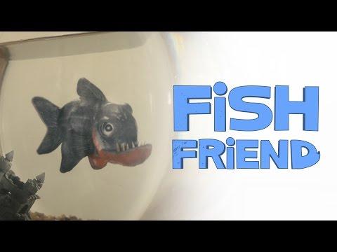 Fish Friend - Short Film