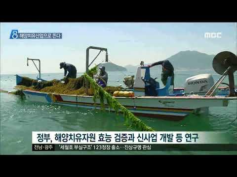 [목포MBC]'해양치유산업'으로 뜬다