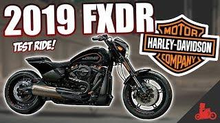 3. 2019 Harley-Davidson FXDR 114 (FXDRS) - Specs & Ride!