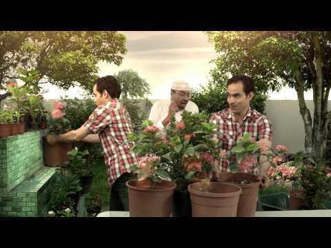 Bahrain Development Bank Financing SME's (Advert 2)