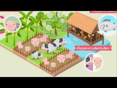 เกษตรผสมผสาน (Intergrated Farming)