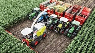 Chopping 20 rows of corn with Kemper Trekkerweb Nederlandse versie