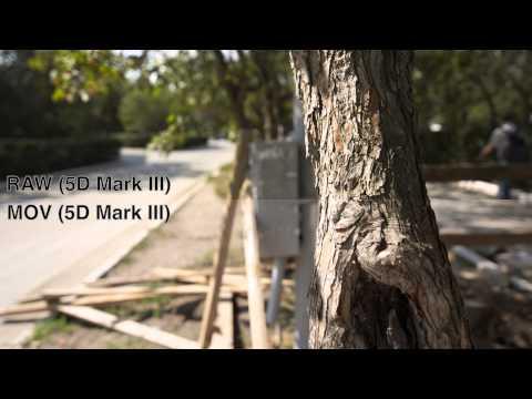 MagicLanter RAW vs original mov on Canon 5D Mark III. Test 2