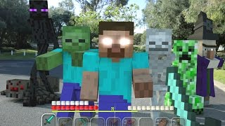 Video Minecraft In Real Life | Lone Survivor MP3, 3GP, MP4, WEBM, AVI, FLV Mei 2019