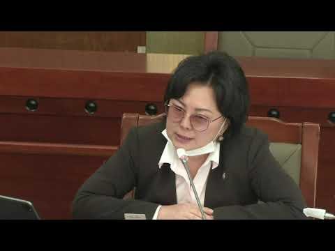 С.Одонтуяа: Хэн нэгний лоббигоор Засгийн газар хууль оруулж ирж болохгүй