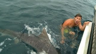 Mad Close To A Shark Attack