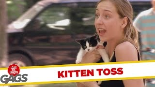 General Funny Pranks - Kitten tossing prank