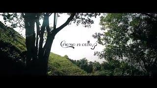 Agradecimentos a empresa Life Moment Films e Aurelius Clarins https://www.aureliusclarins.com.br Video elaborado Em...