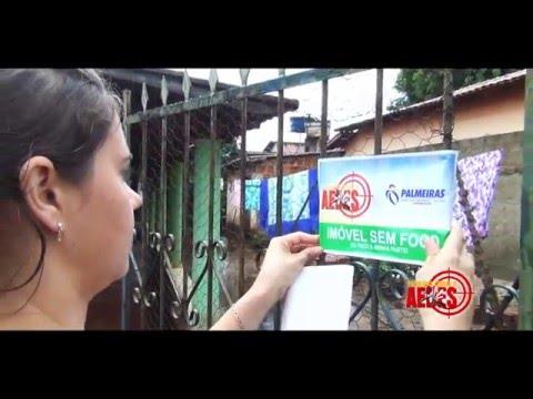 Mutirão Aedes Palmeiras de Goiás