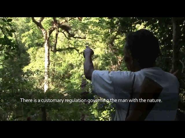 Masyarakat Adat di Indonesia – Eksistensi, Tantangan dan Aspirasi