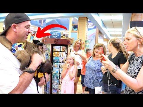 Monkeys Visit Ron Jons Surf Shop!