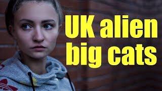 British Big Cats (Sightings)
