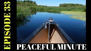 Peaceful Minute ~ Episode 33 ~ Canoeing Stop River Welcome to my Peaceful Minutes Series.I will be posting 1 minute videos of peaceful moments that I see in Nature.We all can use 1 minute of peace in our busy lives.I'm planning on posting a new video to this series every Friday for a year. (Started December 2, 2016)  That's my goal.ENJOY!!********************************************************************Please Subscribe, Like, Comment and Share:You Tube:http://www.youtube.com/user/NaturesFairyMy second Channel: BikingAway:https://www.youtube.com/channel/UCfgDmWTZuHBlJxcyai0HBWQYou can find me on:Facebook Gluten Free Page:https://www.facebook.com/SharingGlutenFreeRecipesMy Blog for all my Gluten Free and some Low Carb Recipes:http://sharingglutenfreerecipes.blogspot.com/Instagram:http://instagram.com/sharingglutenfreerecipes/Pinterest:http://www.pinterest.com/naturesfairy/Twitter:https://twitter.com/NaturesFairyGoggle+:https://plus.google.com/u/0/104572512004936962263Tumblr:http://sharingglutenfreerecipes.tumblr.com/Thanks for watching,Peace ~ Love and JoyAlways be humble ~ Always be kindBrenda ~ NaturesFairy********************************************************************Video recorded on 6/25/17Stop RiverMedfield Massachusetts********************************************************************Peaceful MinutePeaceful Minute Episode 33Peaceful Minute SeriesPeaceful Minute in NaturePeaceful Relaxing MinuteChill out in NatureTimeout in NatureNature MeditationAway from the Hustle and BustleMoments of PeacePeaceful MomentsPeaceful Moments in NatureOne Minute in NatureOne Minute of PeaceOne Minute RelaxationSpend time in NaturePeaceMassachusetts Nature WalkWeekly SeriesSpend time outdoorsSpend time outside60 SecondsTake one minuteJuly 14,  2017Relax for a minuteFriday MomentsPeaceful FridayFlowing WaterMoments of ZenNature MomentsZen Moments in NatureCanoe LifePeaceful CanoeingStop River Medfield MaMedfield MassMedfield MassachusettsCamera:Nikon CoolPix S9900Editing 