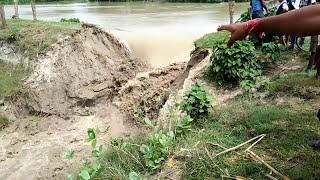 Video Viral || Floodwater || Big Natural Disaster at Malda West Bengal 17/08/2017 HD MP3, 3GP, MP4, WEBM, AVI, FLV Januari 2019