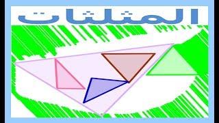 الرياضيات السادسة إبتدائي - المثلثات تمرين 4