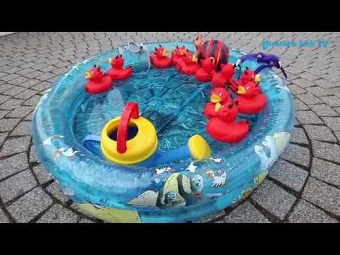 Marburg: Warnstreik am Aquamar - mehr Geld für öffent ...