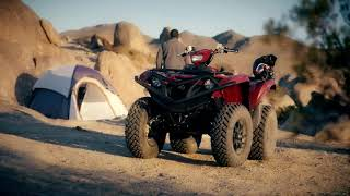 3. 2019 Yamaha Grizzly Overview