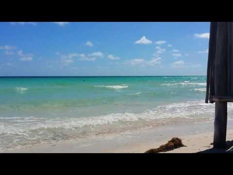 Hotel Tryp Cayo Coco. Cuba