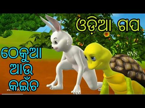 Video Rabit and Tartois odia cartoon video ଠେକୁଆ ଆଉ କଇଁଚ ଓଡିଆ ଗପ download in MP3, 3GP, MP4, WEBM, AVI, FLV January 2017
