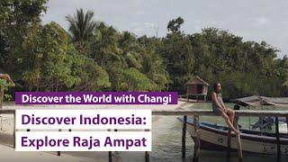 Raja Ampat Indonesia  City pictures : Discover Indonesia: Raja Ampat