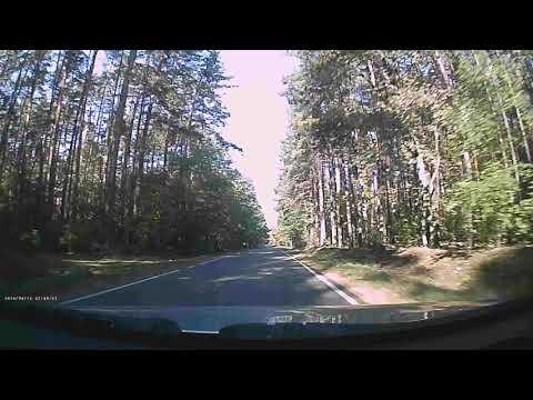 Policja : winnym jest nagrywający bo nie wjechał do rowu lub przywalił w drzewo