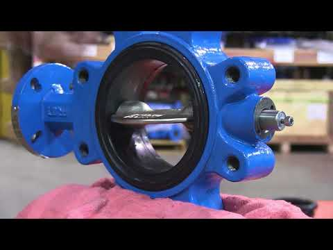 Assembly of the Pratt Industrial BF Series Butterfly Valve