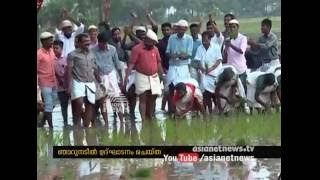 Minister V. S. Sunil Kumar inagurates Paddy farming at uncultivated land at Malappuram