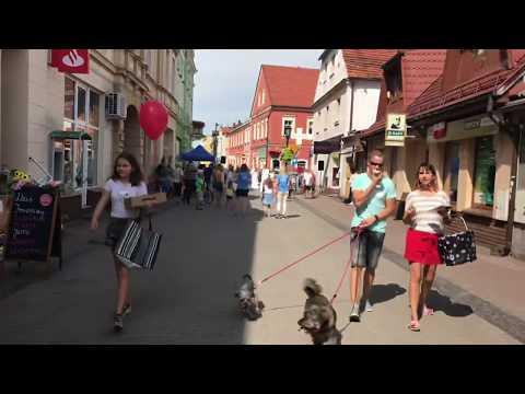 Wideo1: Happening w Gostyniu przed Dożynkami Powiatowymi
