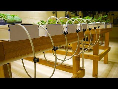 Part 3 - NFT Tables - Basement Hydroponic LED Garden Tour